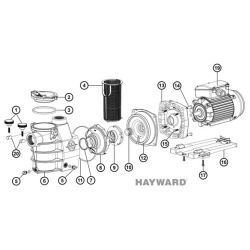 N°2 et 3 - Couvercle et joint de pompe Hayward Max Flo