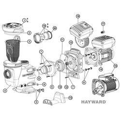 Couvercle de pompe Hayward Max Flo II